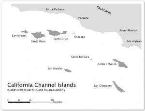 Island Fox Map
