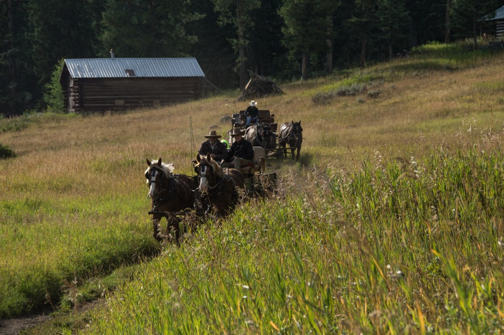 Slough Creek Trail Wagon Train